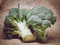 Brokkoli wird patentfrei