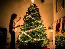 Günstig Weihnachtsbaum kaufen: Diese Tipps solltest du kennen