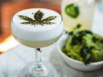 Cannabis-Branche auf All-Time-High