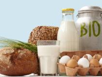 So viel teurer sind Bio-Lebensmittel wirklich